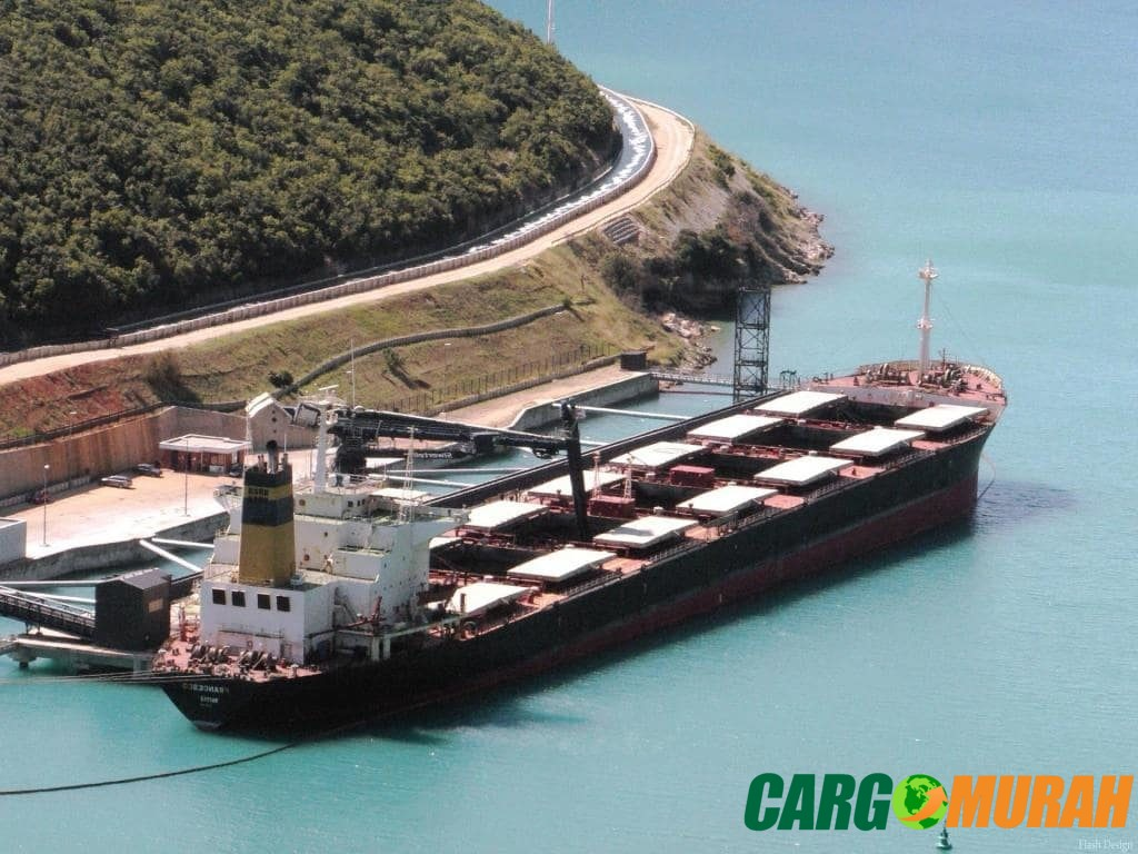 Jasa Pengiriman Barang Via Laut cargo murah