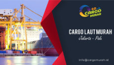 Jasa Cargo Jakarta Palu