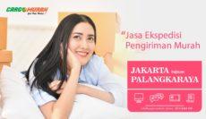 Ekspedisi Jakarta ke Palangkaraya
