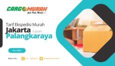 Ekspedisi Murah Jakarta ke Palangkaraya