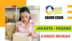 Ekspedisi Murah Cargo Darat Jakarta Padang