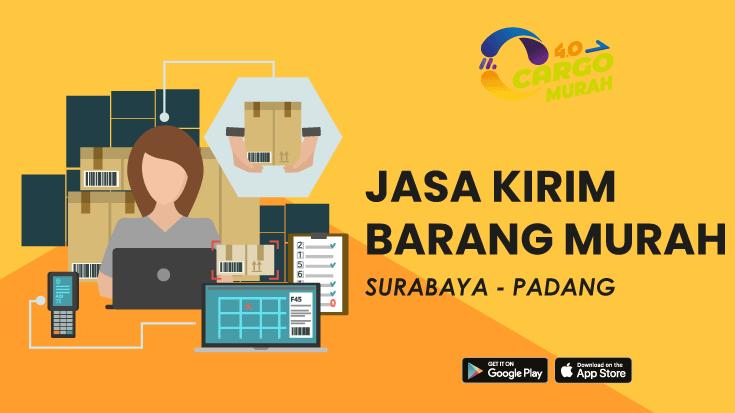 Jasa Ekspedisi Via Cargo Darat Surabaya Padang